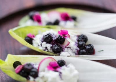 Chicory with Irkotta and Blueberry